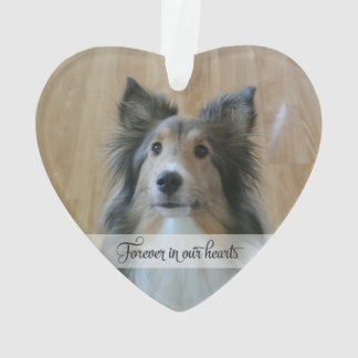 In Memory - Loss of Pet - Custom Photo/Name Ornament