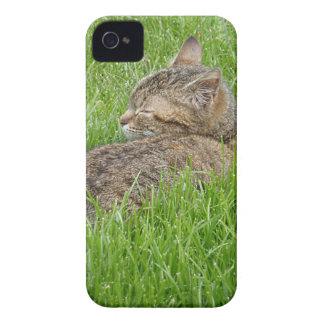 In Nap in Fatty the iPhone 4 Case-Mate Case