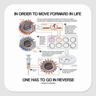 In Order To Move Forward In Life Go Reverse Humor Square Stickers