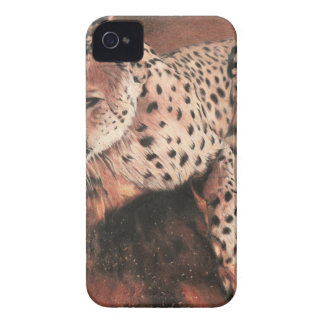 In Pursuit iPhone 4 Cover