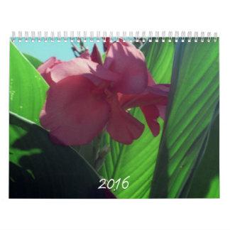 In search of nature calendar