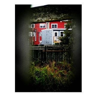 In St. John's: A Peek Through The Fence Postcard