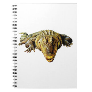 IN STEALTH MODE NOTE BOOK