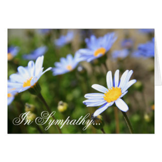 In Sympathy Blue Margurite flower greeting card