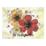 in sympathy postcard