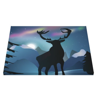 In The Aurora Canvas Print
