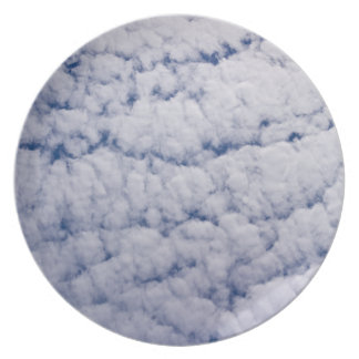 in the cloud P{late Plate