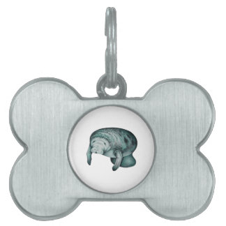 IN THE CRYSTAL PET NAME TAG