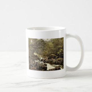 In the Dargle. Co. Wicklow, Ireland classic Photoc Classic White Coffee Mug