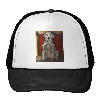 In The Dog House Mesh Hats