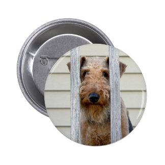 """""""In the Doghouse"""" Pinback Button"""
