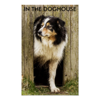 IN THE DOGHOUSE POSTER