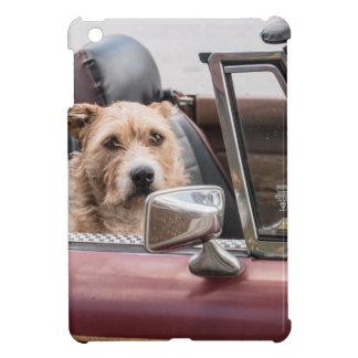 In The Driver's Seat - Sort of iPad Mini Case