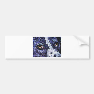 in the eyes of a purple pitty bumper sticker