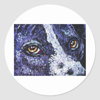 in the eyes of a purple pitty classic round sticker