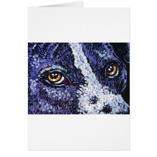 in the eyes of a purple pitty greeting cards
