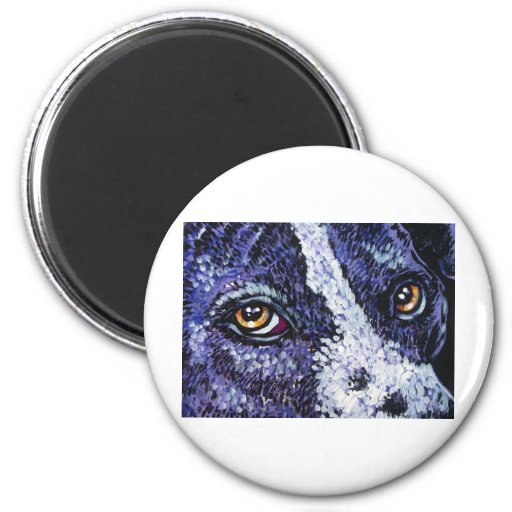 in the eyes of a purple pitty refrigerator magnets