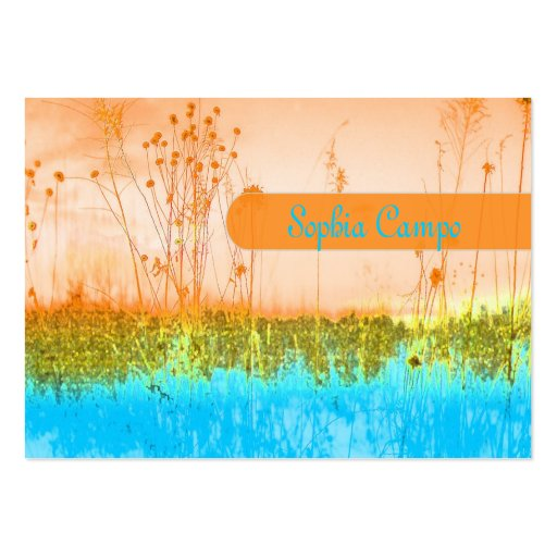 In the field, colorful businesscards template business card