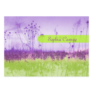 In the field, colorful businesscards template large business card
