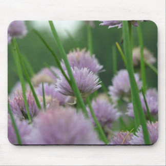 in the field of dreams mouse pad