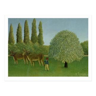 In the Fields, 1910 Postcard