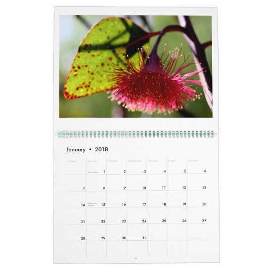 In the garden - 2012 Calendar