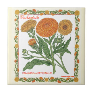 In the Garden ~ Calendula Tile