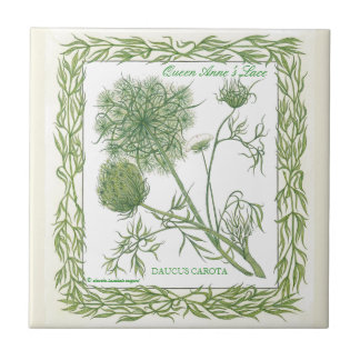 In the Garden ~ Queen Anne's Lace Tile