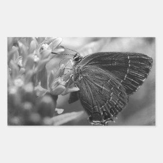 In the garden rectangular sticker