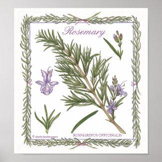 In the Garden ~ Rosemary Poster