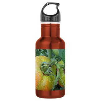 In The Garden Tomatoes Shop Local Photo Design Stainless Steel Water Bottle