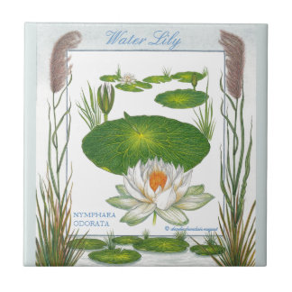In the Garden ~ Water Lily Tile