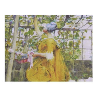 In the Grape Arbor Postcard