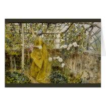 In the Grape Arbor - The Vine