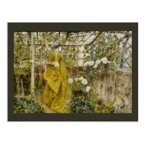 In the Grape Arbor - The Vine Postcard