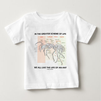 In The Greater Scheme Of Life Live Life Of An Ant Shirt