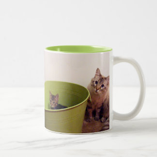 In the green cat mug