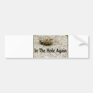 In The Hole Again Bumper Sticker