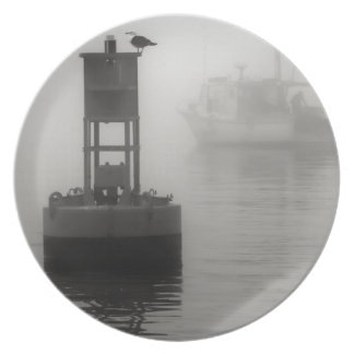 In the Midst of a Fog Plate