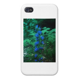 In the night flower iPhone 4 case