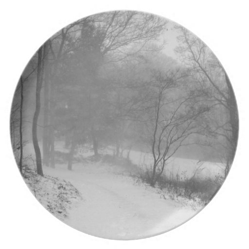 in the snowy woods party plates