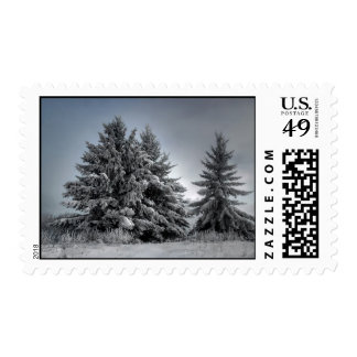 In The Spirit OF winter Postage Stamp