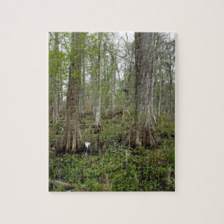 In the Swamp Jigsaw Puzzle