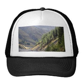 In the Swiss Alps Trucker Hat