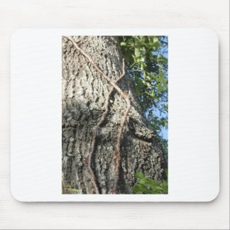 In the Trees Mouse Pad