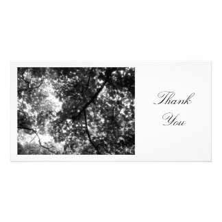 In the Trees - Thank You Personalized Photo Card