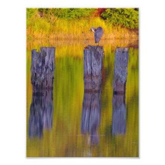 In The Waterway. Photo Print