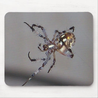 in-the-web mouse pad
