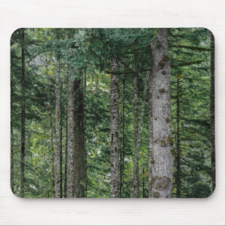 In the Woods Mouse Pad
