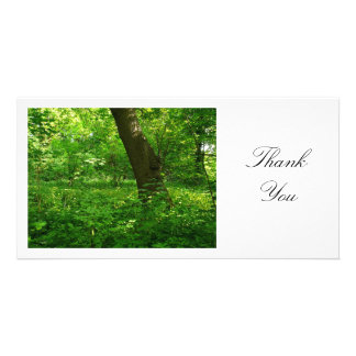 In the Woods - Thank You Custom Photo Card
